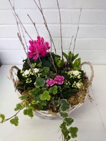 Mothers Day Planter